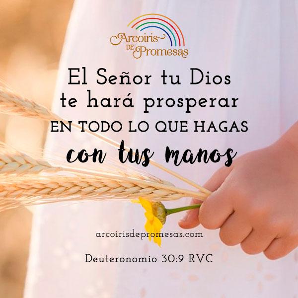 dios te hara prosperar promesa de prosperidad