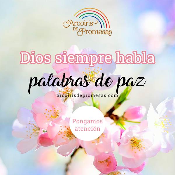 palabras de paz mensaje de aliento para mujeres cristianas