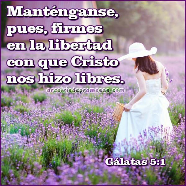 firmes en la libertad enseñanzas biblicas
