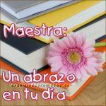 Felicidades a todas las maestras