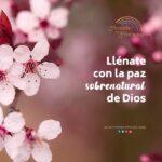 Dios te da paz sobrenatural