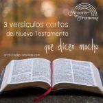 3 versículos cortos del Nuevo Testamento
