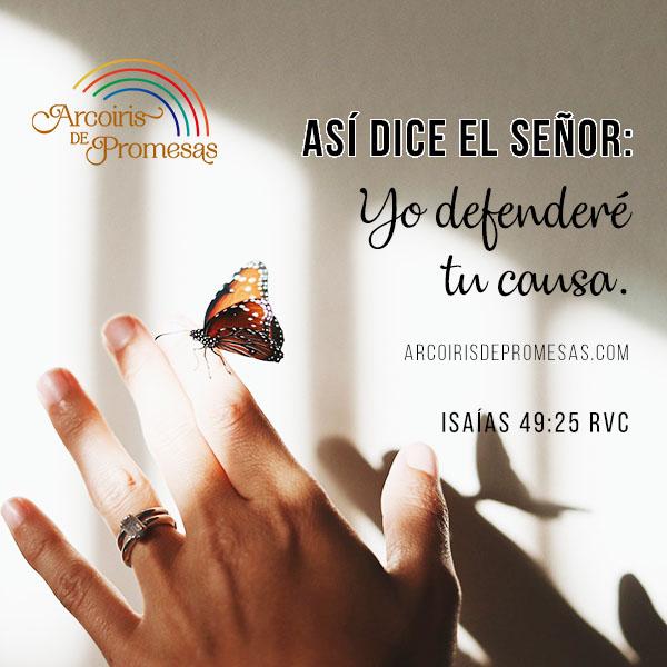 recuperar lo perdido promesas de dios para la mujer cristiana