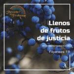 Producir frutos de justicia