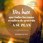 Dios se encarga de todo según su plan