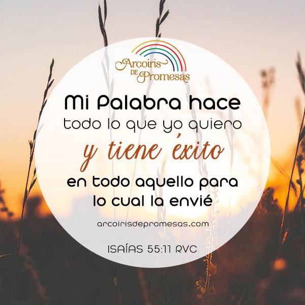 la palabra de dios siempre dara fruto promesa de dios para mujeres cristianas