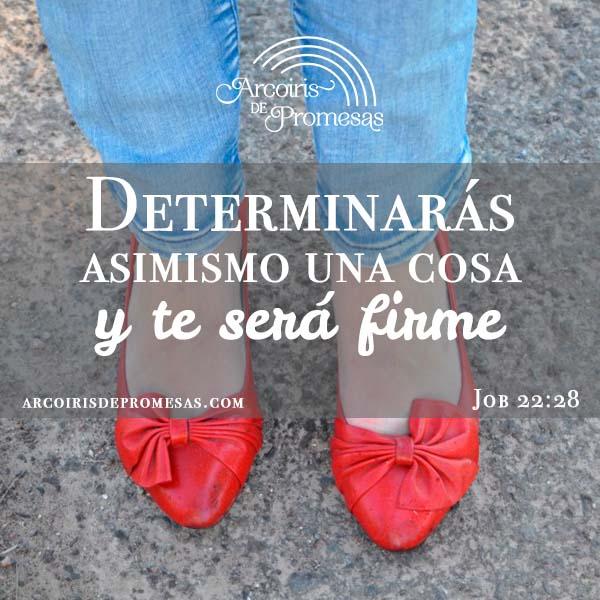 promesa para una mujer de decisiones firmes promesas de dios