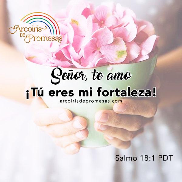 5 pasos para fortalecer el carácter mensaje de aliento para mujeres cristianas